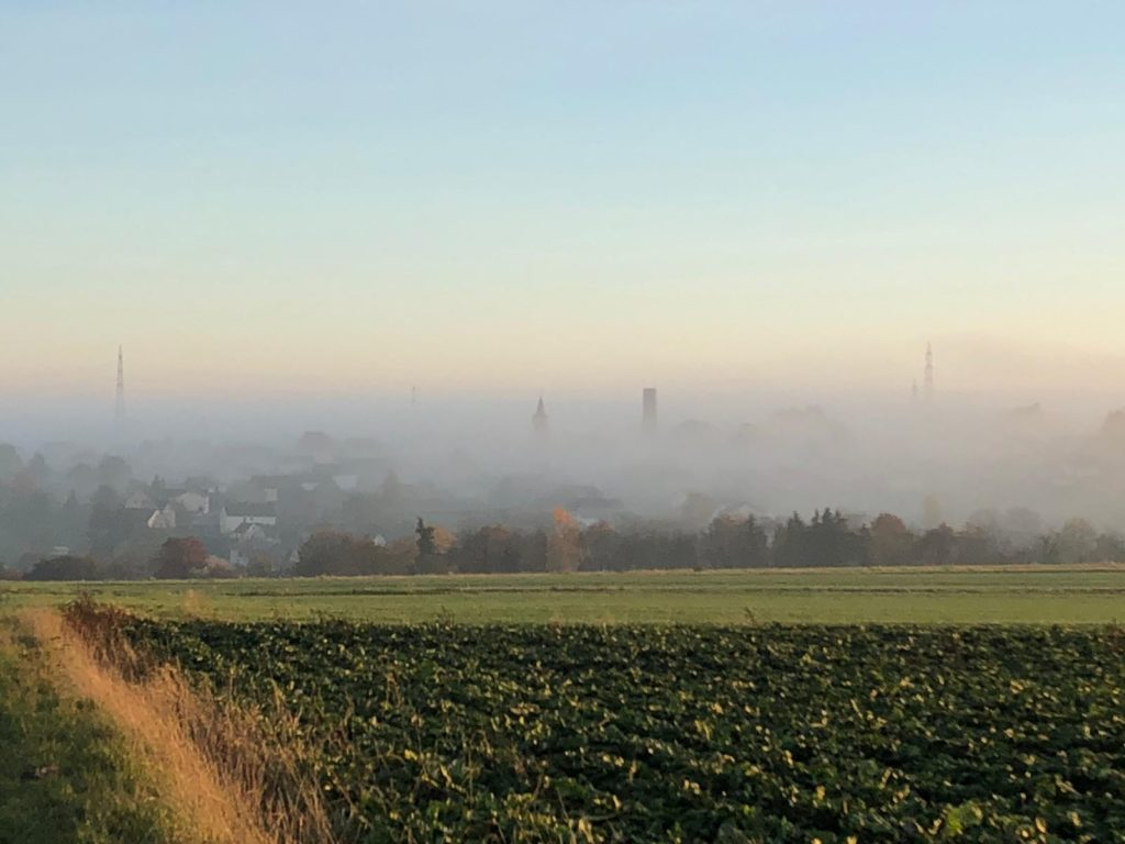 Blick auf Forst im Nebel